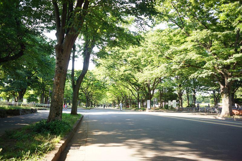 出勤前の 1round が可能です、この距離は・・@駒沢1丁目